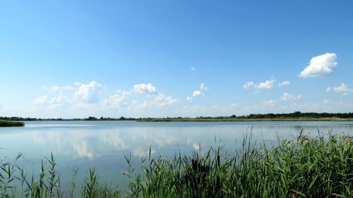 кимовское водохранилище рыбалка 2015