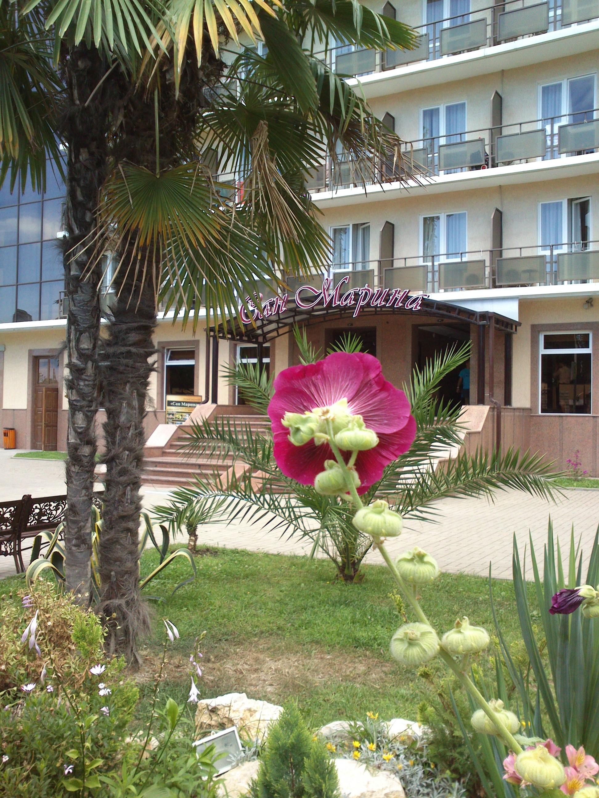 Отель санмарин фото пляжа