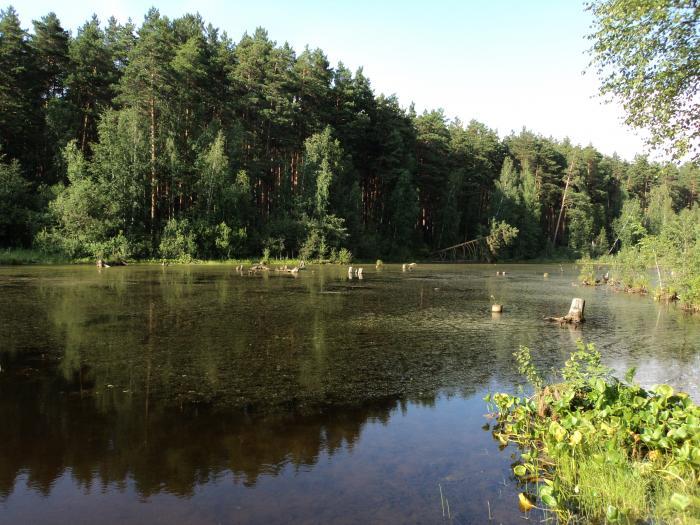 платная рыбалка екатеринбург щучье