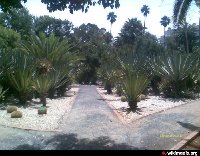 Jardin d 39 essais botaniques rabat parc jardin botanical garden en for Jardin 00 garden