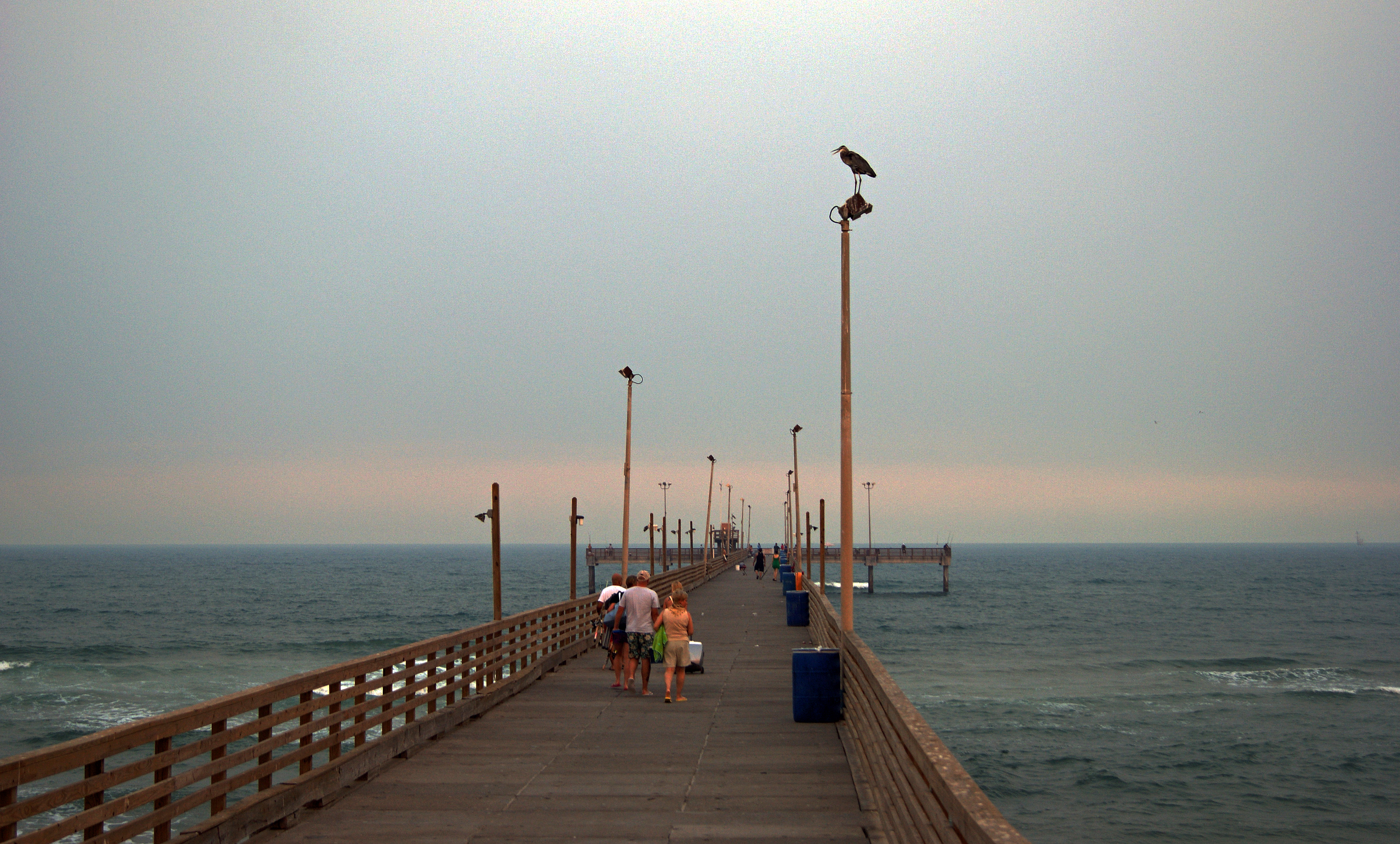 Padre bali park corpus christi texas beach fishing for Fishing in corpus christi texas