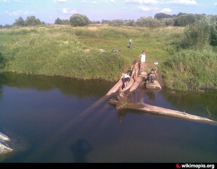 кашинский пруд рыбалка
