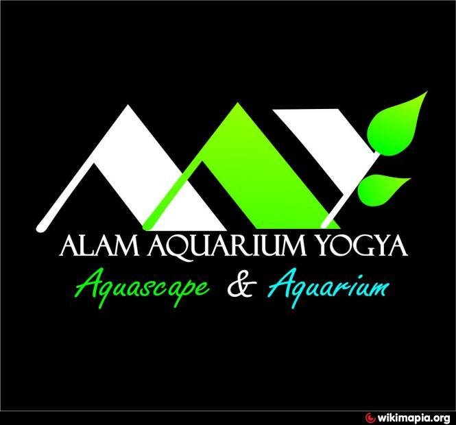 Alam aquarium yogya yogyakarta for Dekor international pt