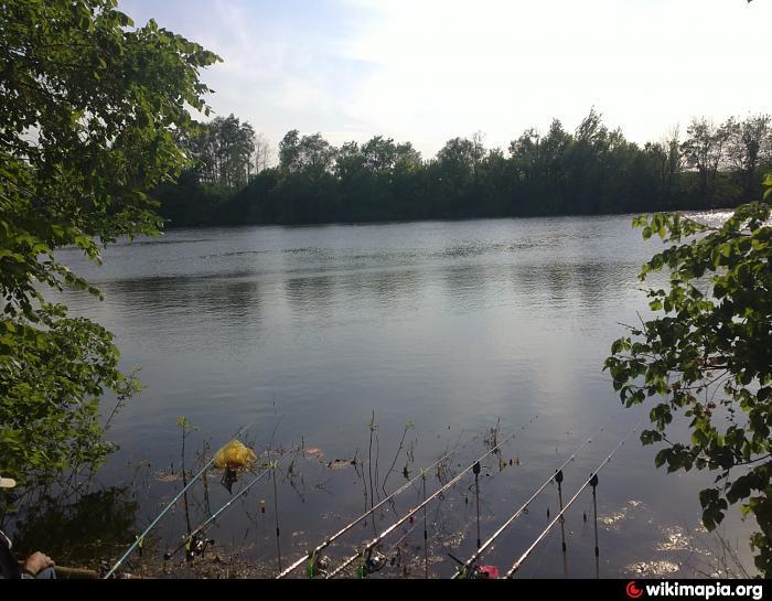 рыбалка в липецке пруды платная рыбалка