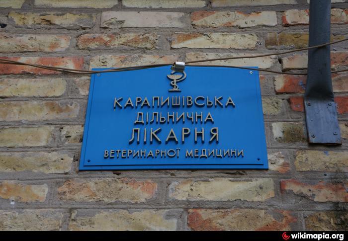 69 поликлиника адрес москва