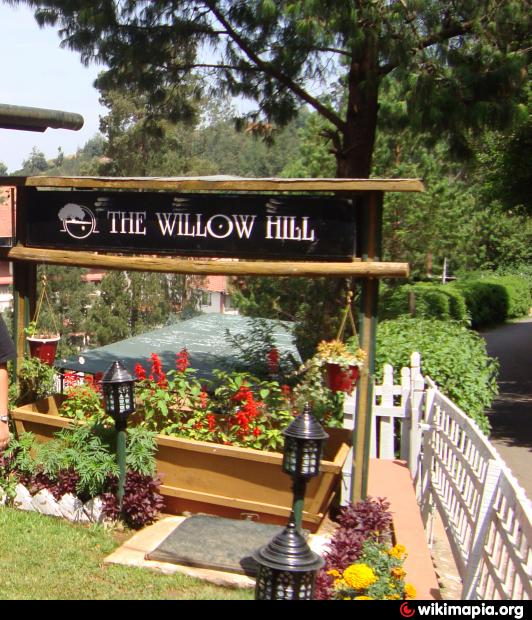 willow hill divorced singles Your one stop for singles in the prairie state of illinois find your match in illinois today whether you are interested in a long term relationship or just looking to make friends in willow hill,illinois, matchcom is the place to be.