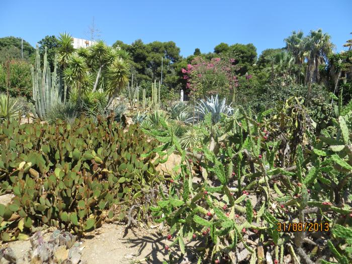 Parque de la paloma for Agro jardin estepona