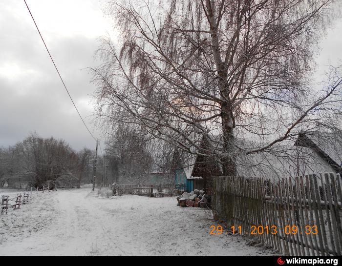 Погода псковская область малая губа