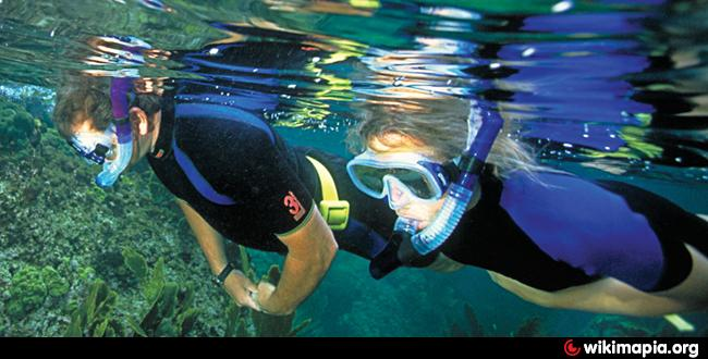 Reef oasis dive club branca in reef oasis blue bay resort - Reef oasis dive club ...