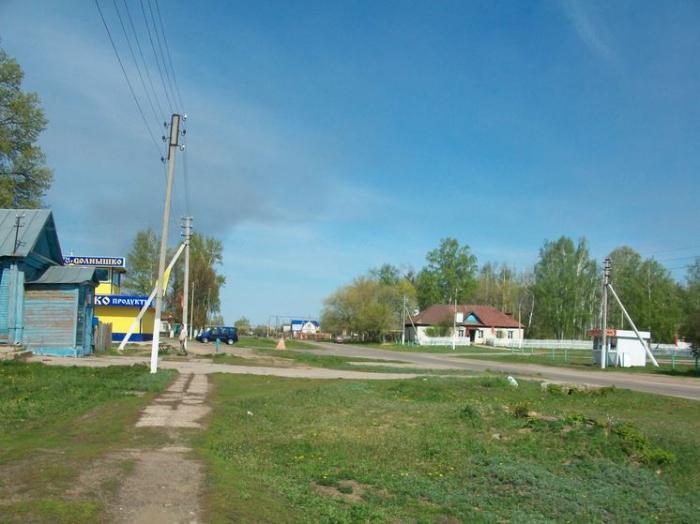 фото село никольское-на-черемшане