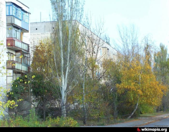 Деревья около дома фото