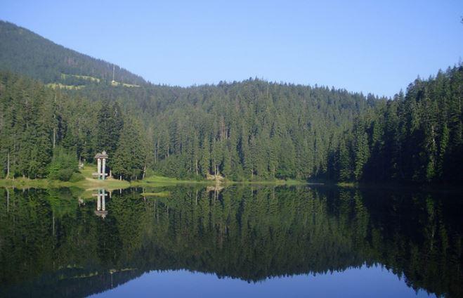 National Nature Park Synevir