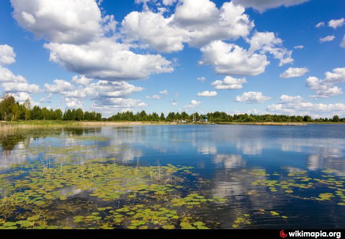 платная рыбалка на кудринском озере