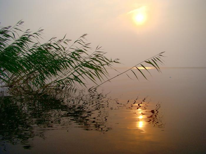 озеро лача что и на что ловить