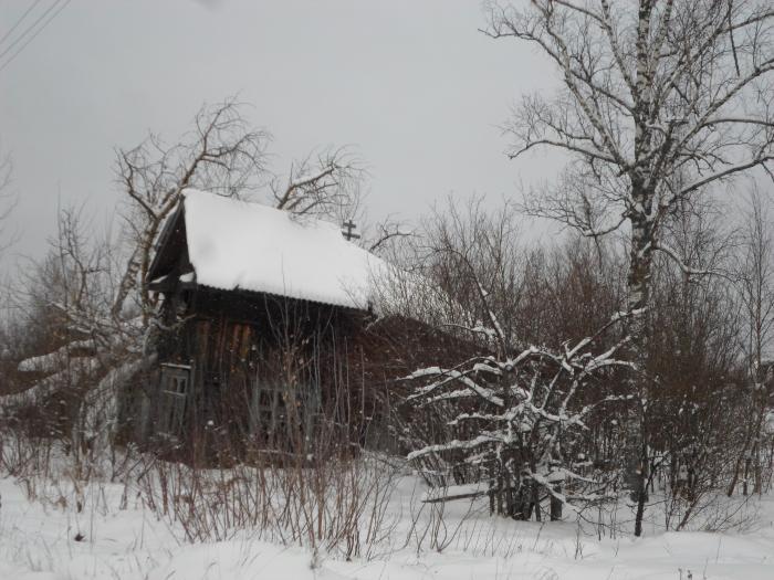 посёлок сухобезводное фото
