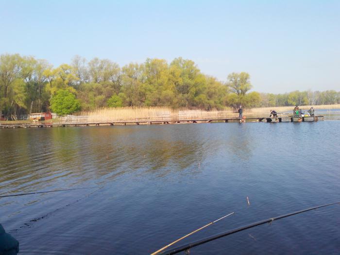 рыбалка тихая бухта черкассы