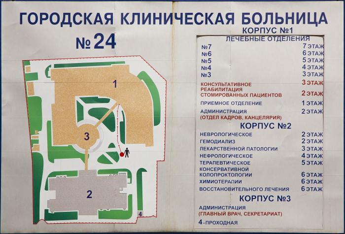 Детская городская клиническая больница 9 поликлиника 1