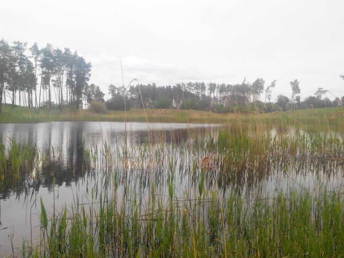 Озеро Щучанское (Щучье)