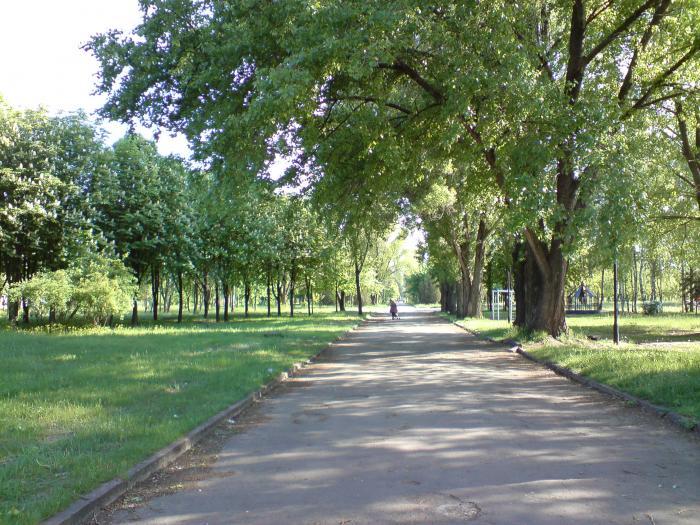 Масштабная реконструкция парков Кривого Рога