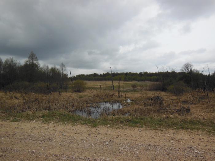 Продам земельный участок 380 гектар в гнездилово д, зубцовском районе, тверской области