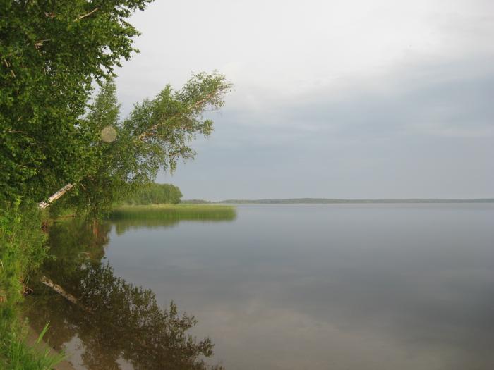 озеро крошечный  окункуль рыбалка