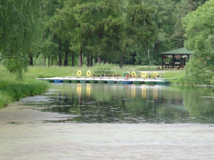 прокат лодок в павловском парке