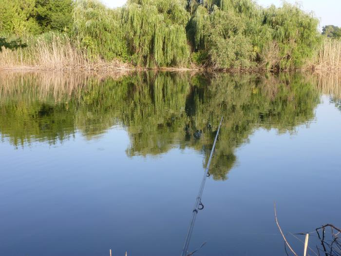 новочеркасск пруд рыбалка
