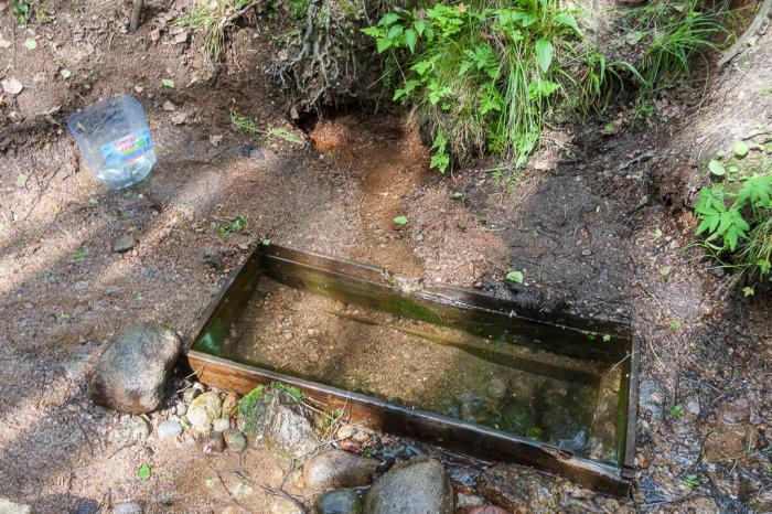 качество воды родника в глебычево отзывы однокомнатную