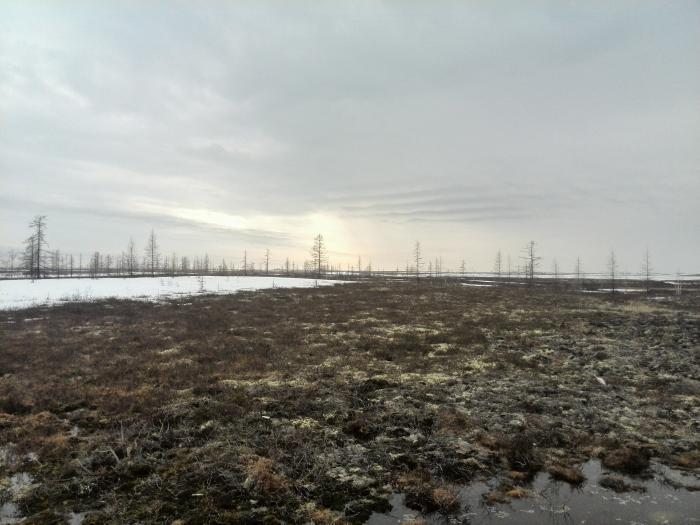 Тагульское Месторождение На Карте Красноярского Края