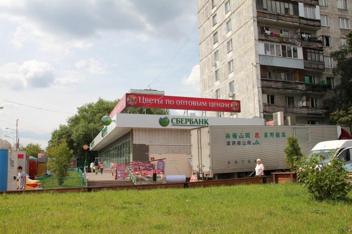 Луганская улица, 5, корпус 1, район царицыно, москва, 115304