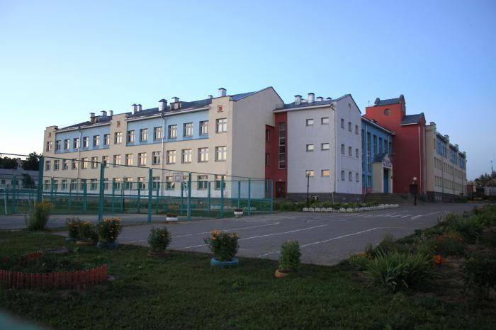 Дивеевская средняя школа №1 дивеево
