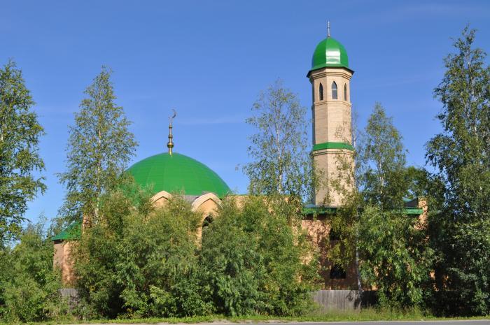 Панславянское объединение считает возведение мечети на севере Томской области незаконным