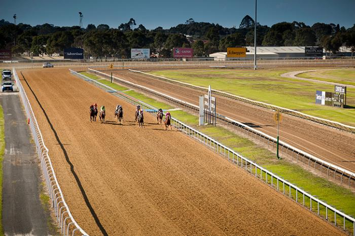Geelong Racecourse