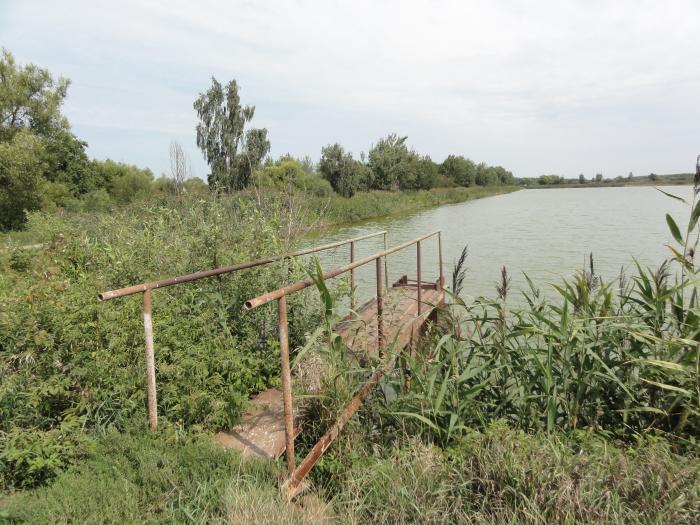 егорьевское рыболовное хозяйство рыборазводные пруды