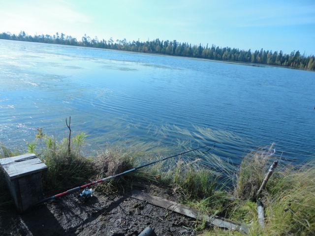 рыбалка в нижневартовске на озерах