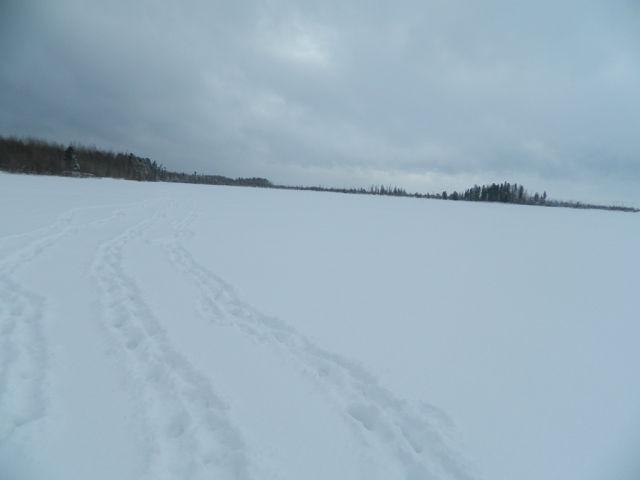 нижневартовск озера клев
