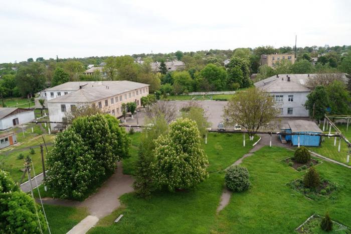 Больница имени скворцова в спб