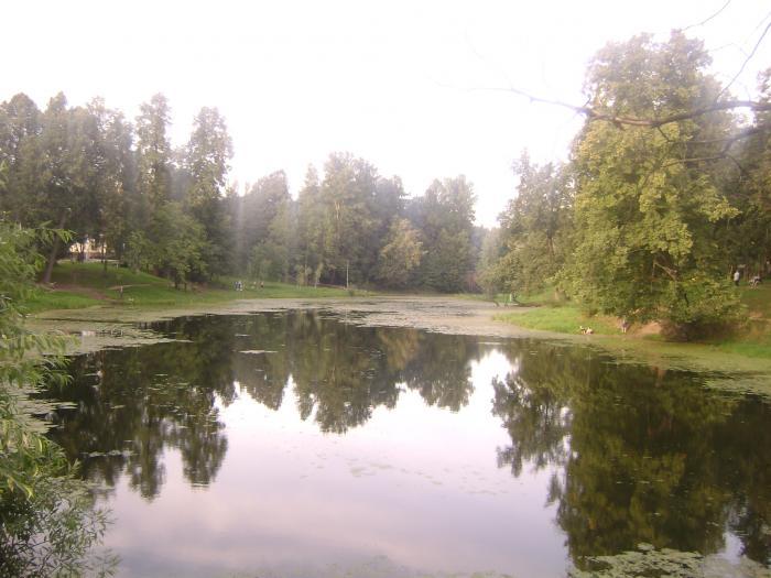 графский пруд коломяги рыбалка