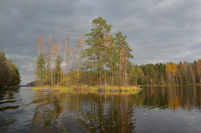 макаровское озеро ленинградская область рыбалка