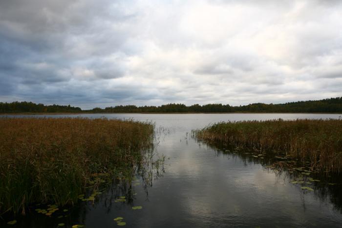 рыболовные базы озера себеж