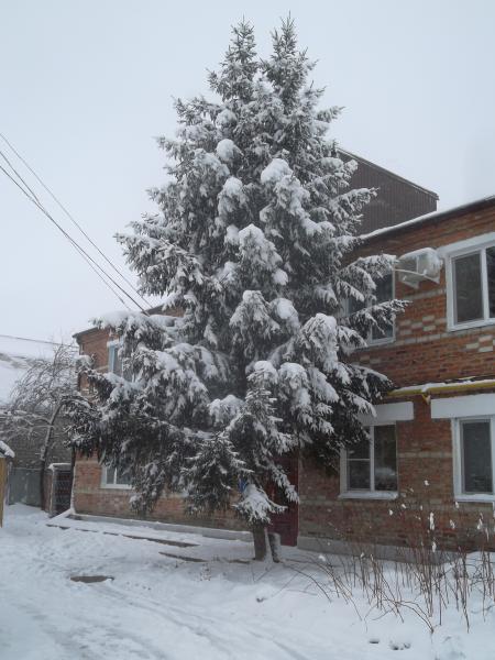 индивидуалки в городе крымск