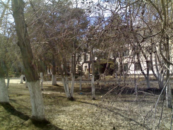 Детская областная больница нижний новгород ванеева запись на прием