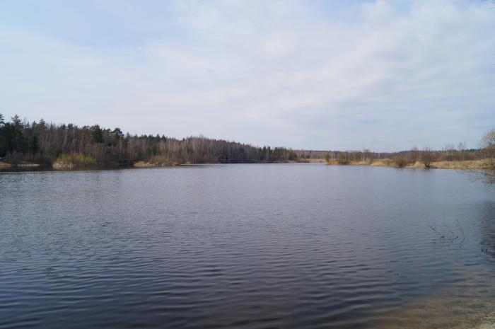 молоковский район рыбалка