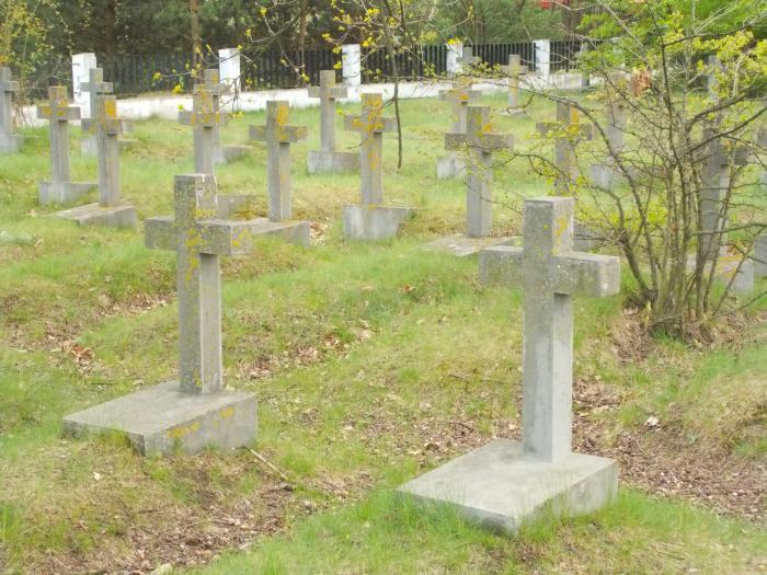 """Результат пошуку зображень за запитом """"німецький військовий цвинтар"""""""