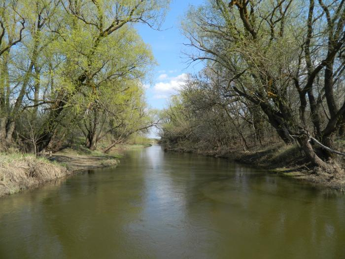 клев иловля река