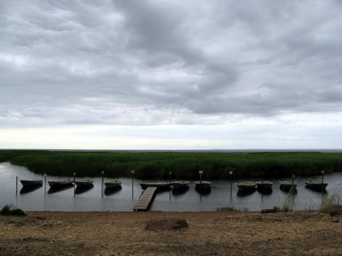 рыболовная база черная лахта