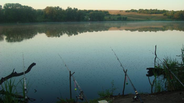 рыбалка город харьков