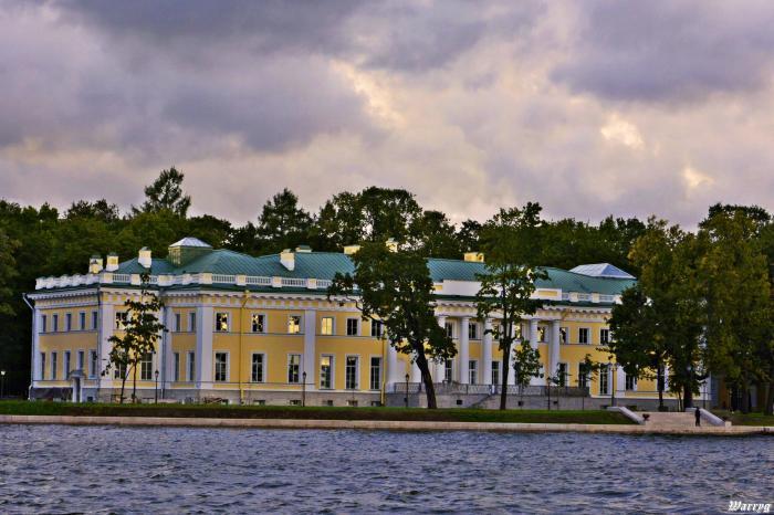 Kamenny Island Palace  Wikipedia