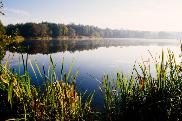 Рыбалка на озере конча