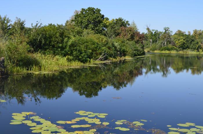 Конча озерна сайт